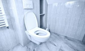 A Guide to Choosing Eco-Friendly and Low Flush Toilets.jpg